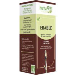Herbalgem Esdoorn maceraat bio Druppels 50ml