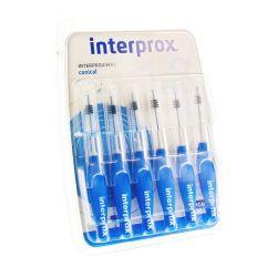 Interprox Premium Konisch Blau 6 Stück