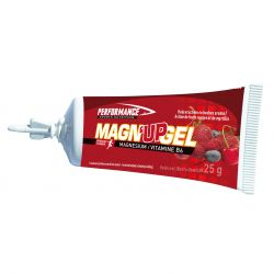 Performance Magn'up gel Stick de gel 36x25g
