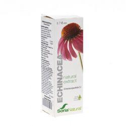 Soria Echinacea extract in glycerine Druppels 50ml