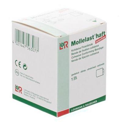 Mollelast haft bande de fixation adhésive 6cmx20m sans latex 1 pièces
