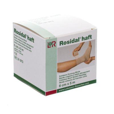 Rosidal Haft 6 cm x 5 m 1 Stück