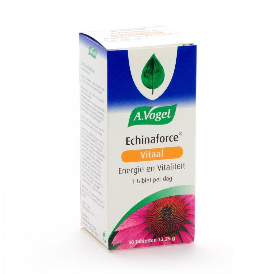 echinacea weerstand