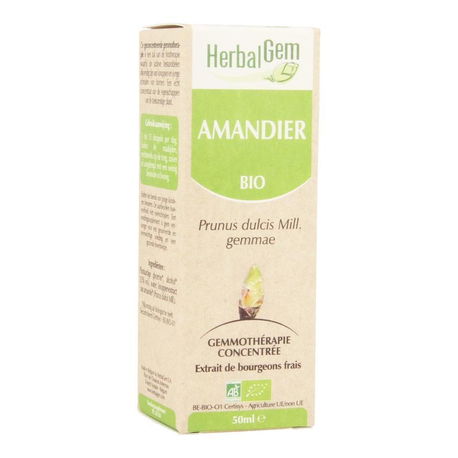 Image of Herbalgem amande douce macérat