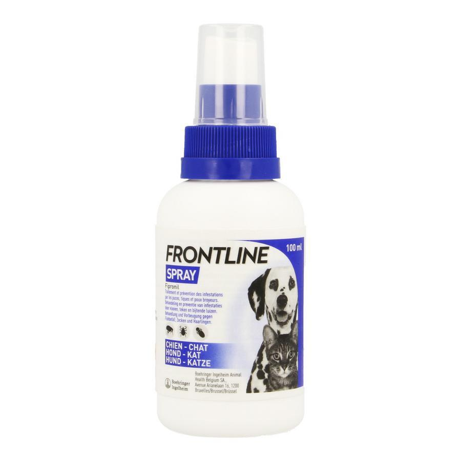 Image of Frontline