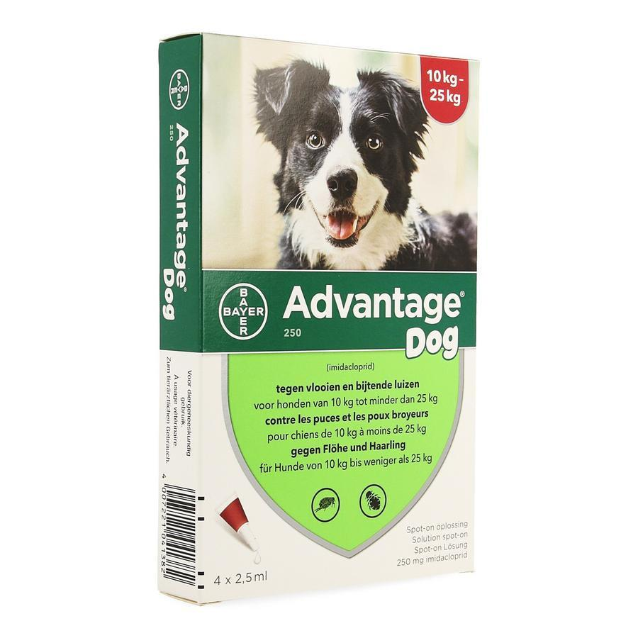 Image of Advantage 250 Chiens 10<25kg Spot-on
