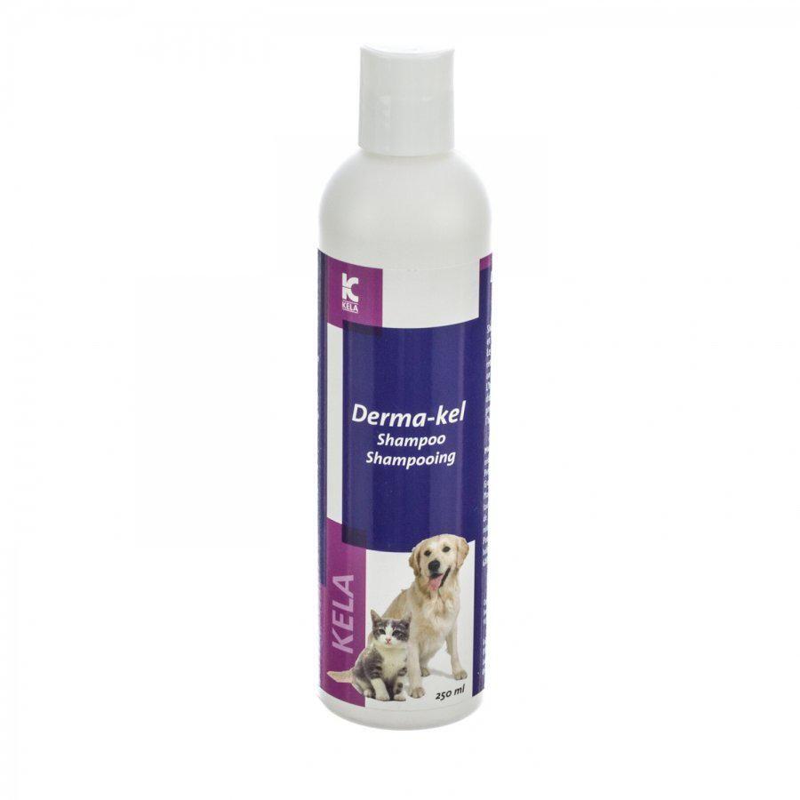 Image of Derma-kel shampooing chat et chien