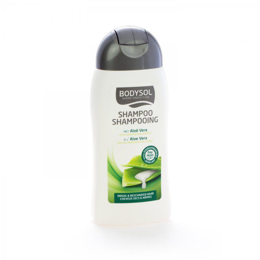 Bodysol shampoo droog haar